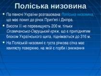 Поліська низовина Па півночі України розташована Поліська низовина, що має по...