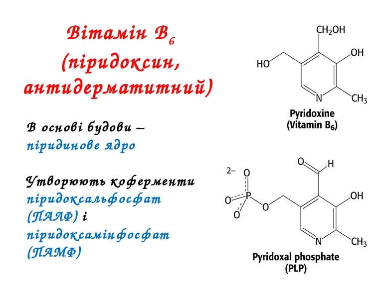 Вітамін В6 (піридоксин, антидерматитний) В основі будови – піридинове ядро Ут...