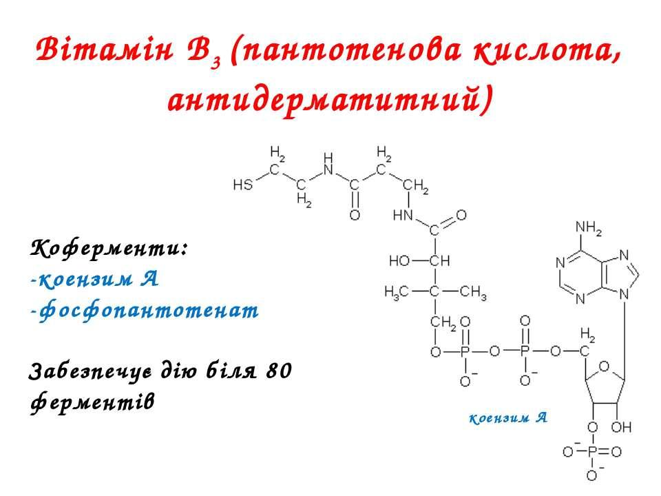 Вітамін В3 (пантотенова кислота, антидерматитний) Коферменти: -коензим А -фос...