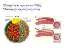Попереджає окислення ЛНЩ Знижує ризик атеросклерозу