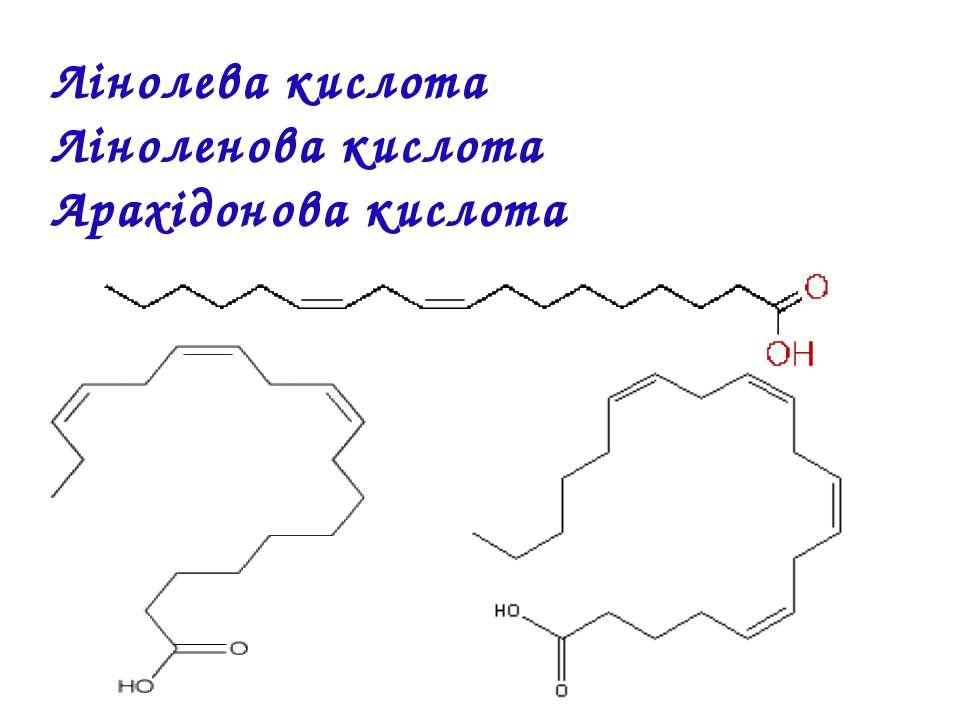 Лінолева кислота Ліноленова кислота Арахідонова кислота