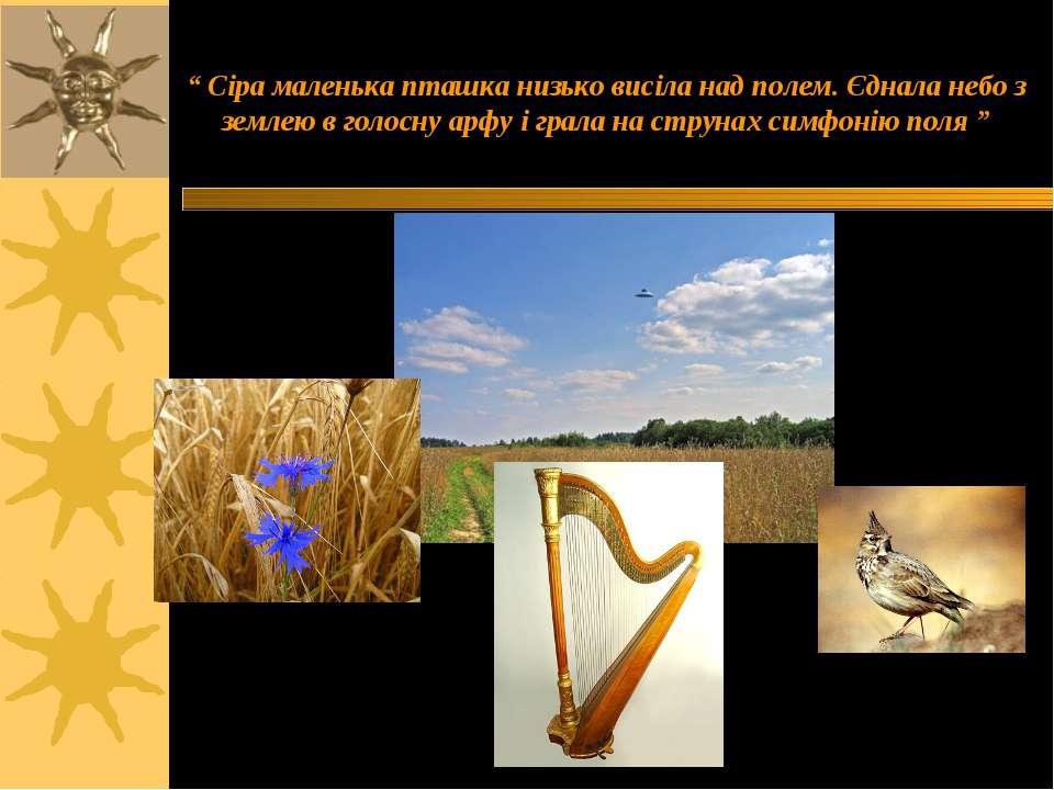 """"""" Сіра маленька пташка низько висіла над полем. Єднала небо з землею в голосн..."""