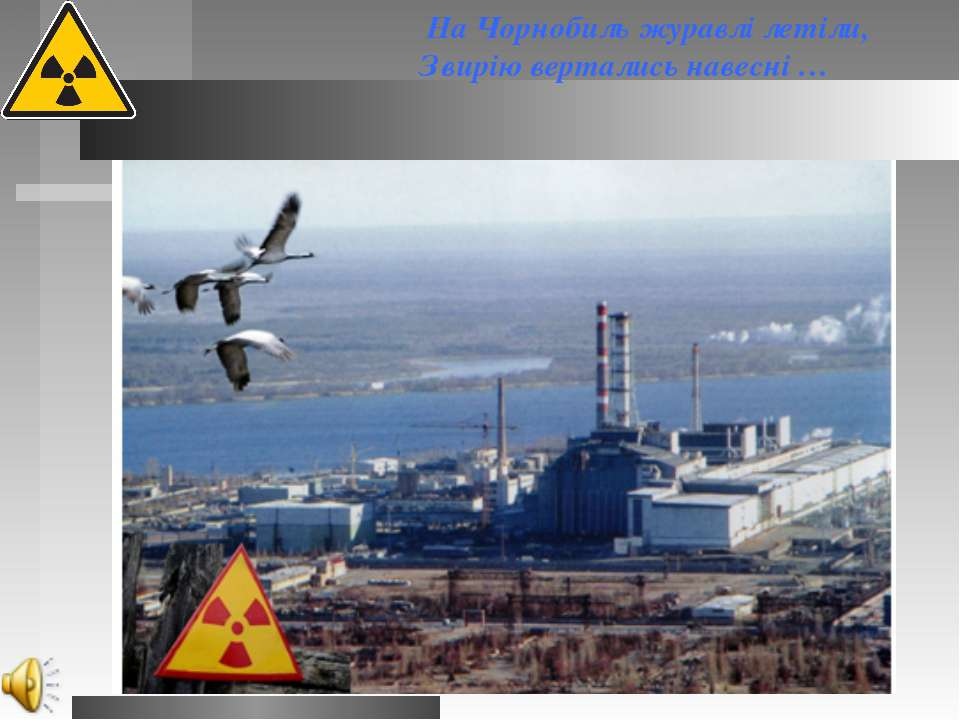 На Чорнобиль журавлі летіли, ...