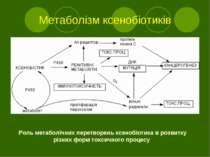 Метаболізм ксенобіотиків Роль метаболічних перетворень ксенобіотика в розвитк...