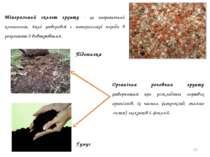 * Мінеральний скелет грунту - це неорганічний компонент, який утворився з мат...