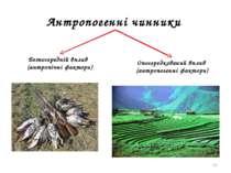 * Антропогенні чинники Безпосередній вплив (антропічні фактори) Опосередкован...