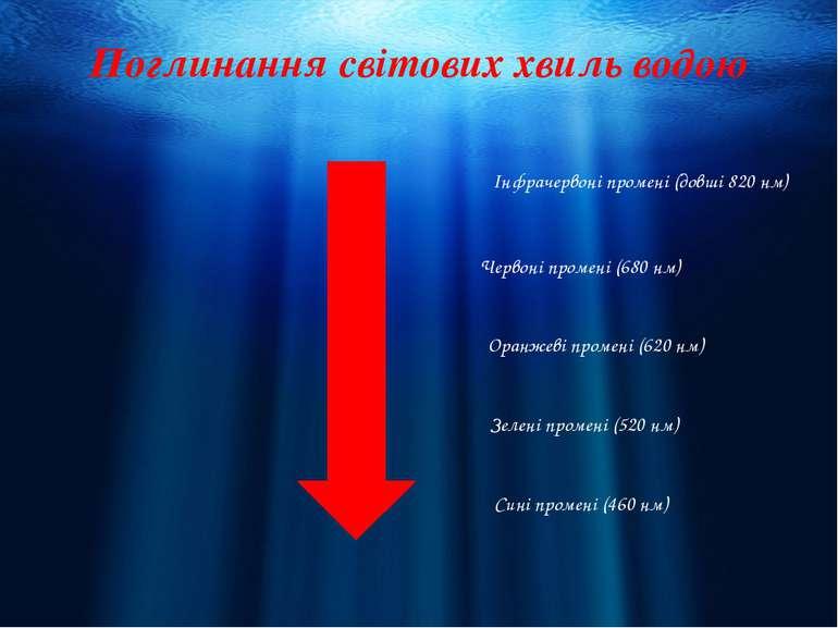 Поглинання світових хвиль водою