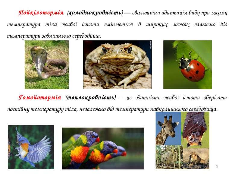 Пойкілотермія (холоднокровність) — еволюційна адаптація виду при якому темпер...