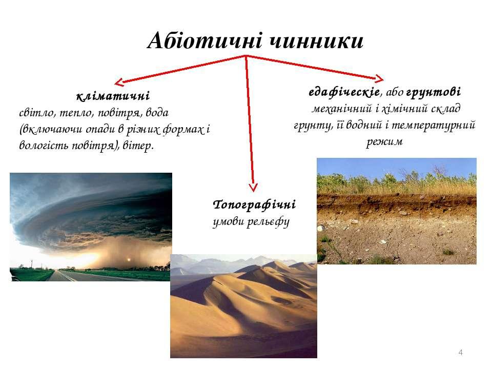 Абіотичні чинники кліматичні світло, тепло, повітря, вода (включаючи опади в ...