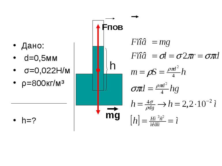 Дано: d=0,5мм σ=0,022Н/м ρ=800кг/м³ h=? Fпов mg h