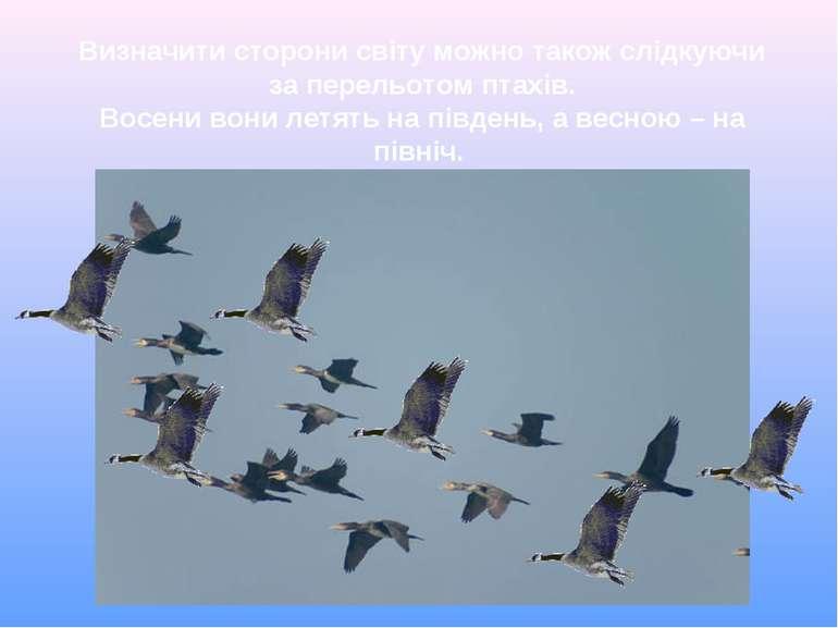 Визначити сторони світу можно також слідкуючи за перельотом птахів. Восени во...