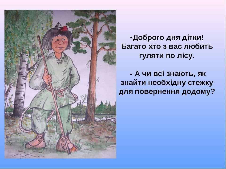 Доброго дня дітки! Багато хто з вас любить гуляти по лісу. - А чи всі знають,...