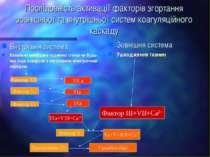 Послідовність активації факторів згортання зовнішньої та внутрішньої систем к...