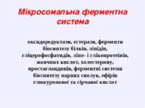 Мікросомальна ферментна система оксидоредуктази, естерази, ферменти біосинтез...