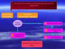 Механізм дії тіазидних діуретиків при артеріальній гіпертензії Дихлотіазид (г...