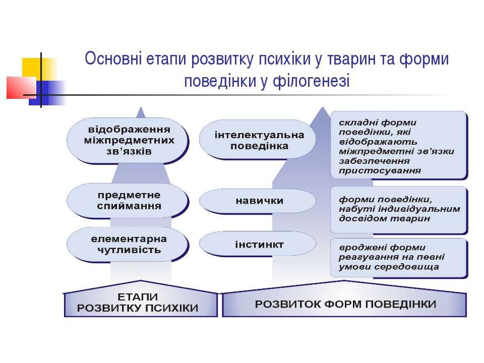 Основні етапи розвитку психіки у тварин та форми поведінки у філогенезі
