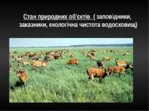 Стан природних об'єктів ( заповідники, заказники, екологічна чистота водосховищ)