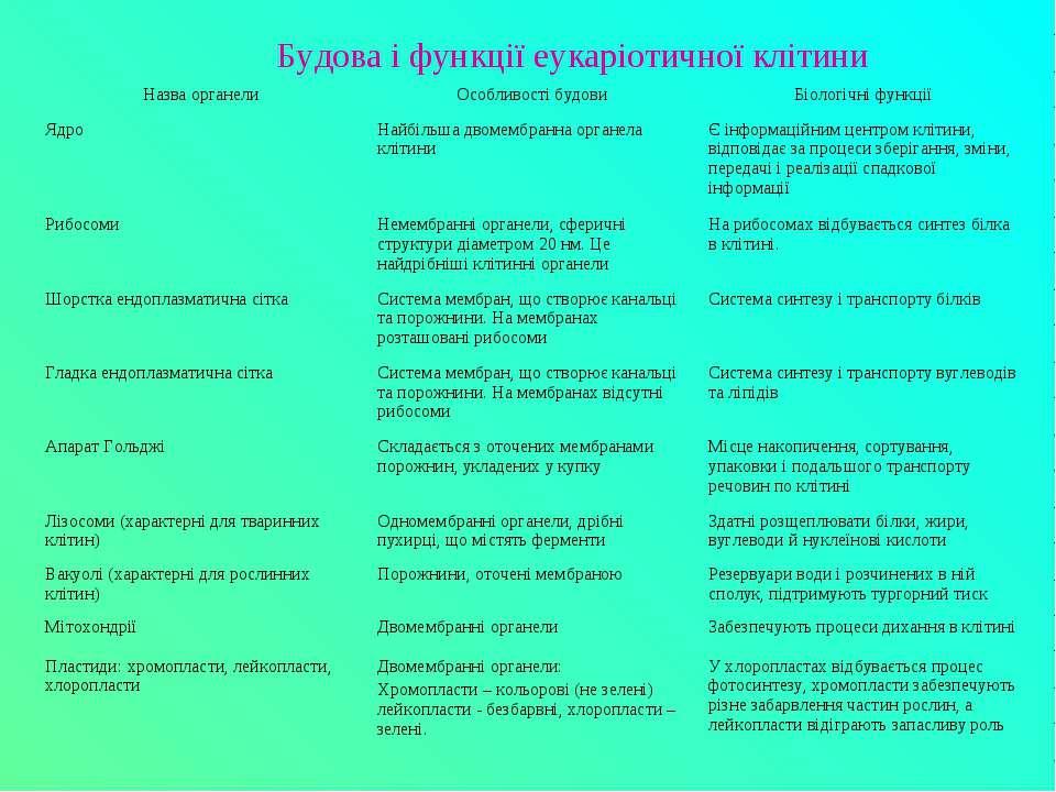 Будова і функції еукаріотичної клітини