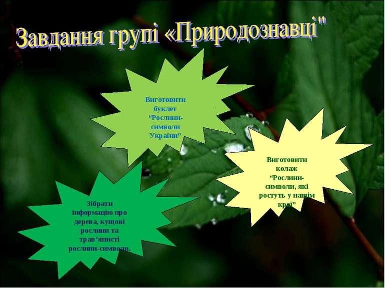 Зібрати інформацію про дерева, кущові рослини та трав'янисті рослини-символи....