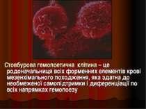 Стовбурова гемопоетична клітина – це родоначальниця всіх форменних елементів ...