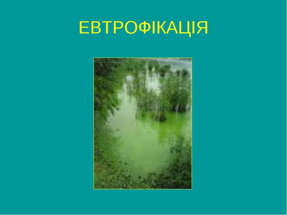 ЕВТРОФІКАЦІЯ
