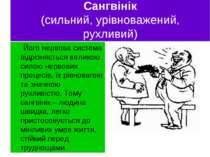 Сангвінік (сильний, урівноважений, рухливий) Його нервова система відрізняєть...