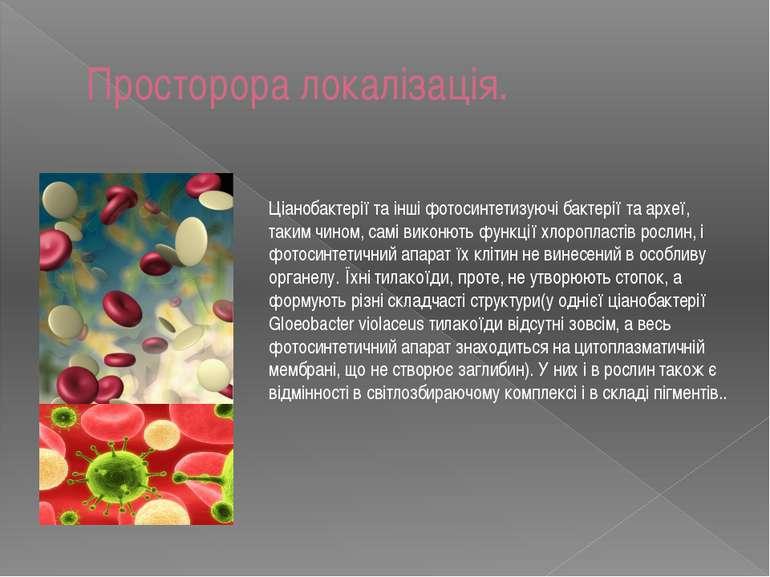 Просторора локалізація. Ціанобактерії та інші фотосинтетизуючі бактерії та ар...