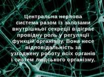 Центральнанервова системаразом із залозами внутрішньої секреції відіграє пр...