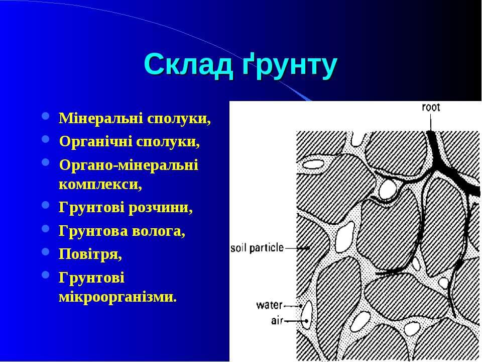 Склад ґрунту Мінеральні сполуки, Органічні сполуки, Органо-мінеральні комплек...