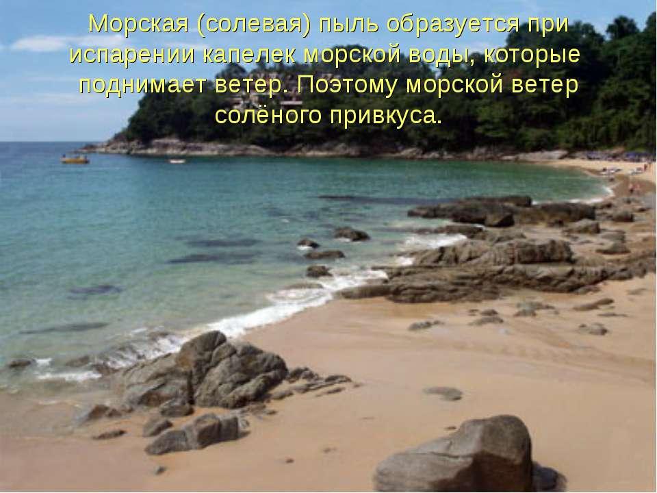Морская (солевая) пыль образуется при испарении капелек морской воды, которые...
