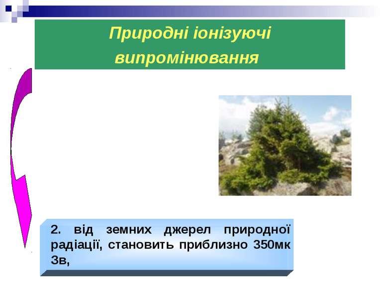 Природні іонізуючі випромінювання 2. від земних джерел природної радіації, ст...