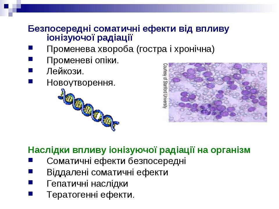 Безпосередні соматичні ефекти від впливу іонізуючої радіації Променева хвороб...