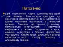 Патогенез При поступленні через шлунково-кишковий тракт свинець і його сполук...