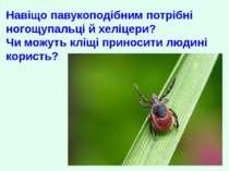 Навіщо павукоподібним потрібні ногощупальці й хеліцери? Чи можуть кліщі прино...