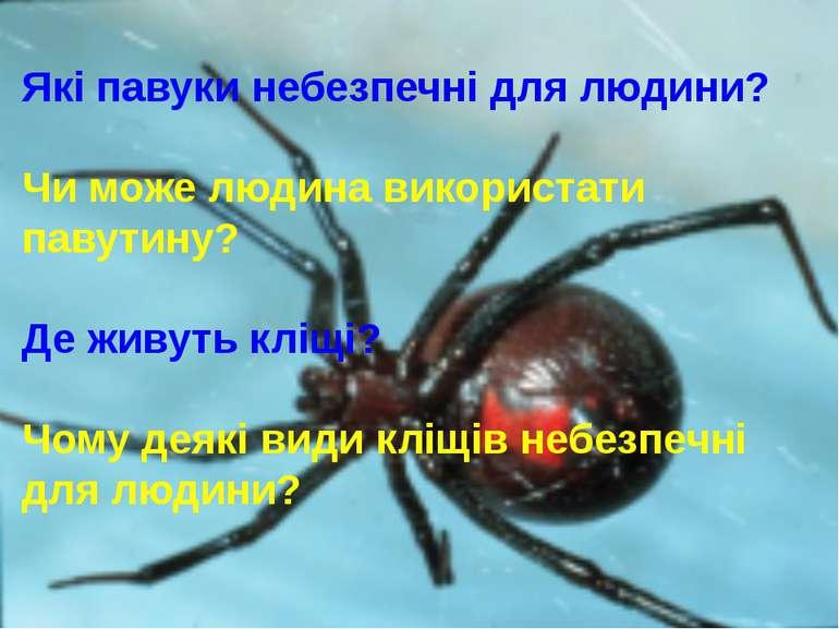Які павуки небезпечні для людини? Чи може людина використати павутину? Де жив...