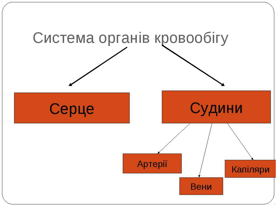 Система органів кровообігу Серце Судини Артерії Вени Капіляри