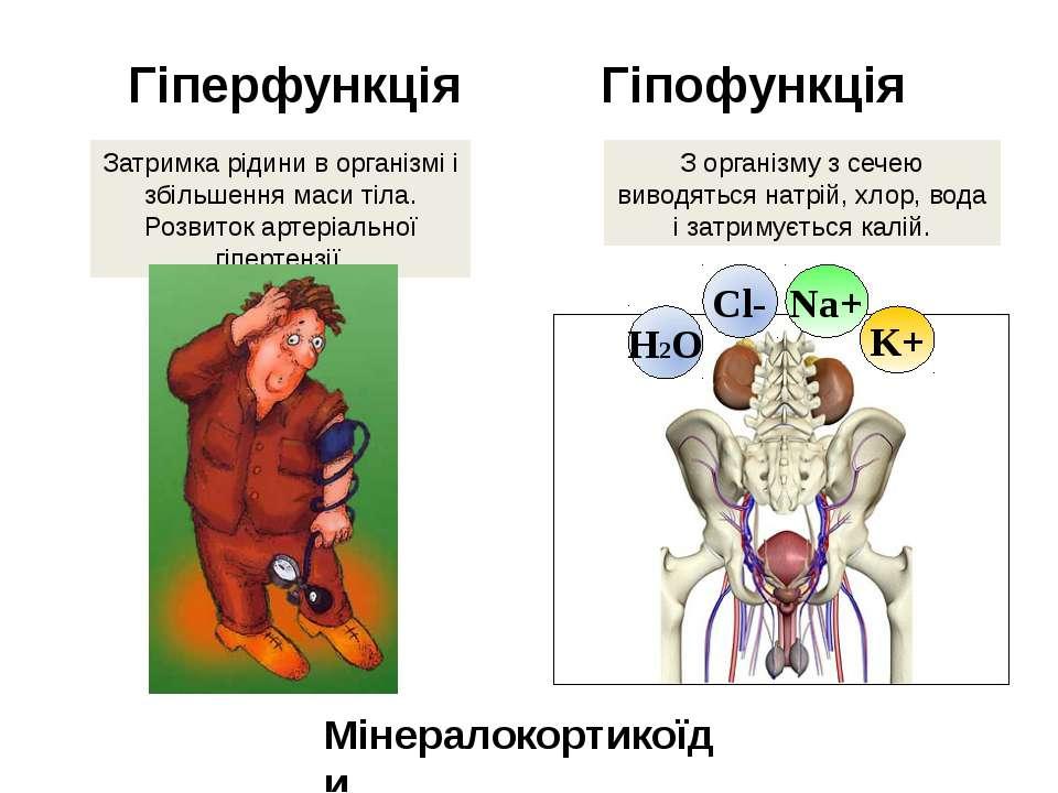 Гіперфункція Гіпофункція Затримка рідини в організмі і збільшення маси тіла. ...