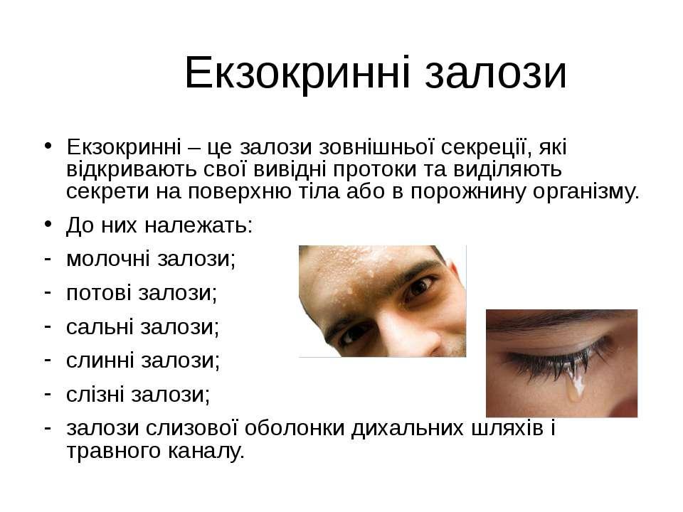 Екзокринні залози Екзокринні – це залози зовнішньої секреції, які відкривають...