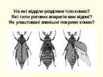 На які відділи розділене тіло комах? Які типи ротових апаратів вам відомі? Як...