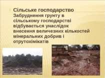 Сільське господарство Забруднення грунту в сільському господарстві відбуваєть...
