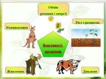Властивості організмів Обмін речовин і енергії Ріст і розвиток Розмноження Ди...