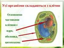 Усі організми складаються з клітин Основними частинами клітини є ядро, оболон...