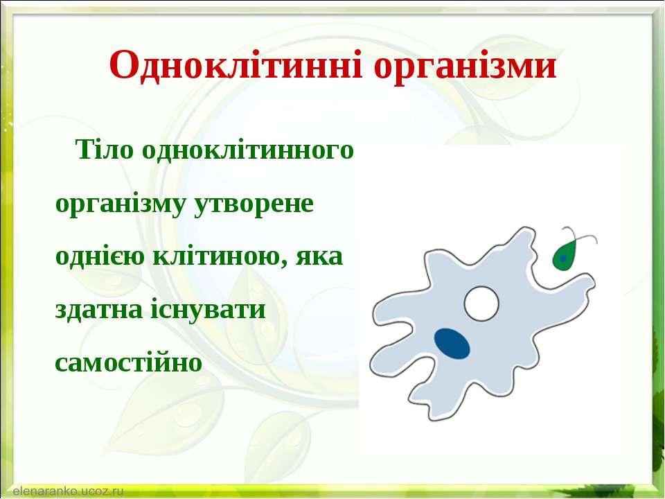Одноклітинні організми Тіло одноклітинного організму утворене однією клітиною...
