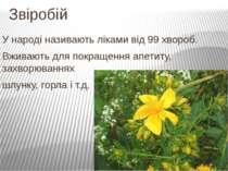 Звіробій У народі називають ліками від 99 хвороб. Вживають для покращення апе...