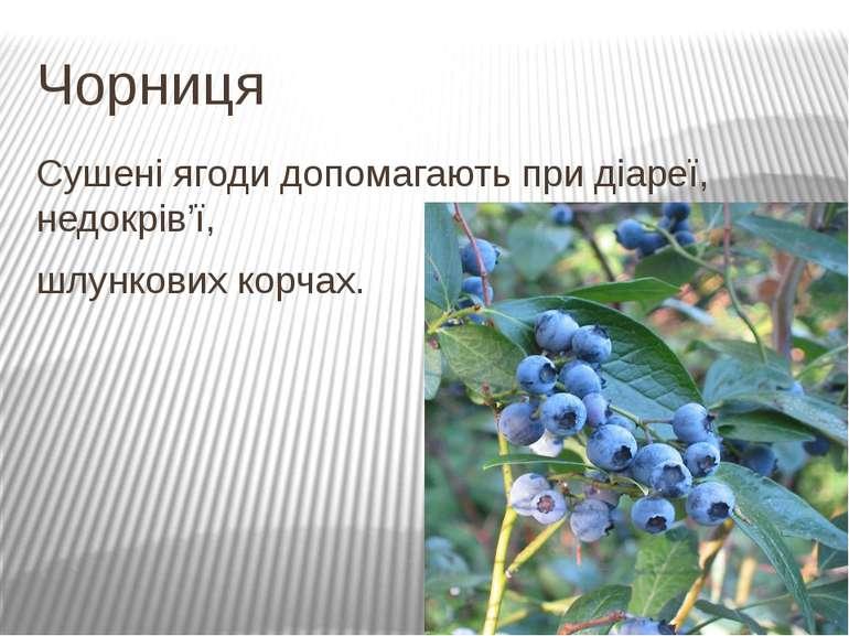 Чорниця Сушені ягоди допомагають при діареї, недокрів'ї, шлункових корчах.