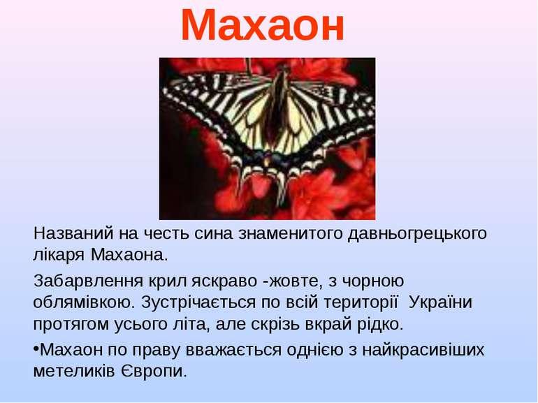 Махаон Названий на честь сина знаменитого давньогрецького лікаря Махаона. Заб...