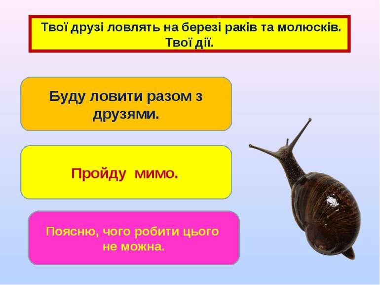 Твої друзі ловлять на березі раків та молюсків. Твої дії. Буду ловити разом з...