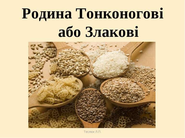 Теслюк Л.П. Родина Тонконогові або Злакові Теслюк Л.П.