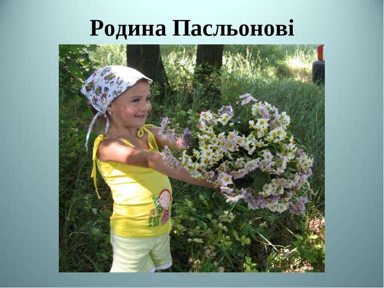 Родина Пасльонові Теслюк Л.П Теслюк Л.П