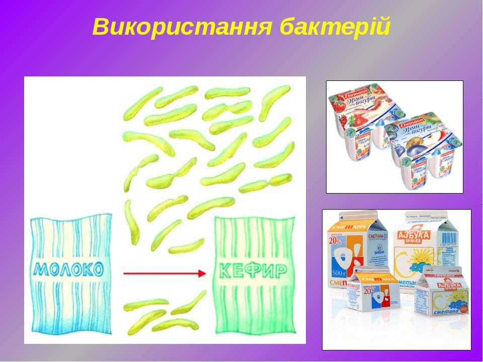 Використання бактерій